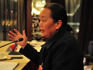 雷菊芳:我们需要一个从长计议的政府